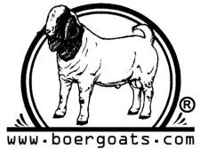 BoerGoats Article Newmanagement