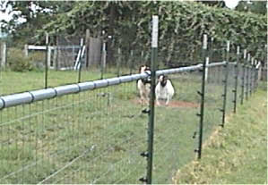 HOW TO INSTALL AN ELECTRIC FENCE FOR GOATS | EHOW
